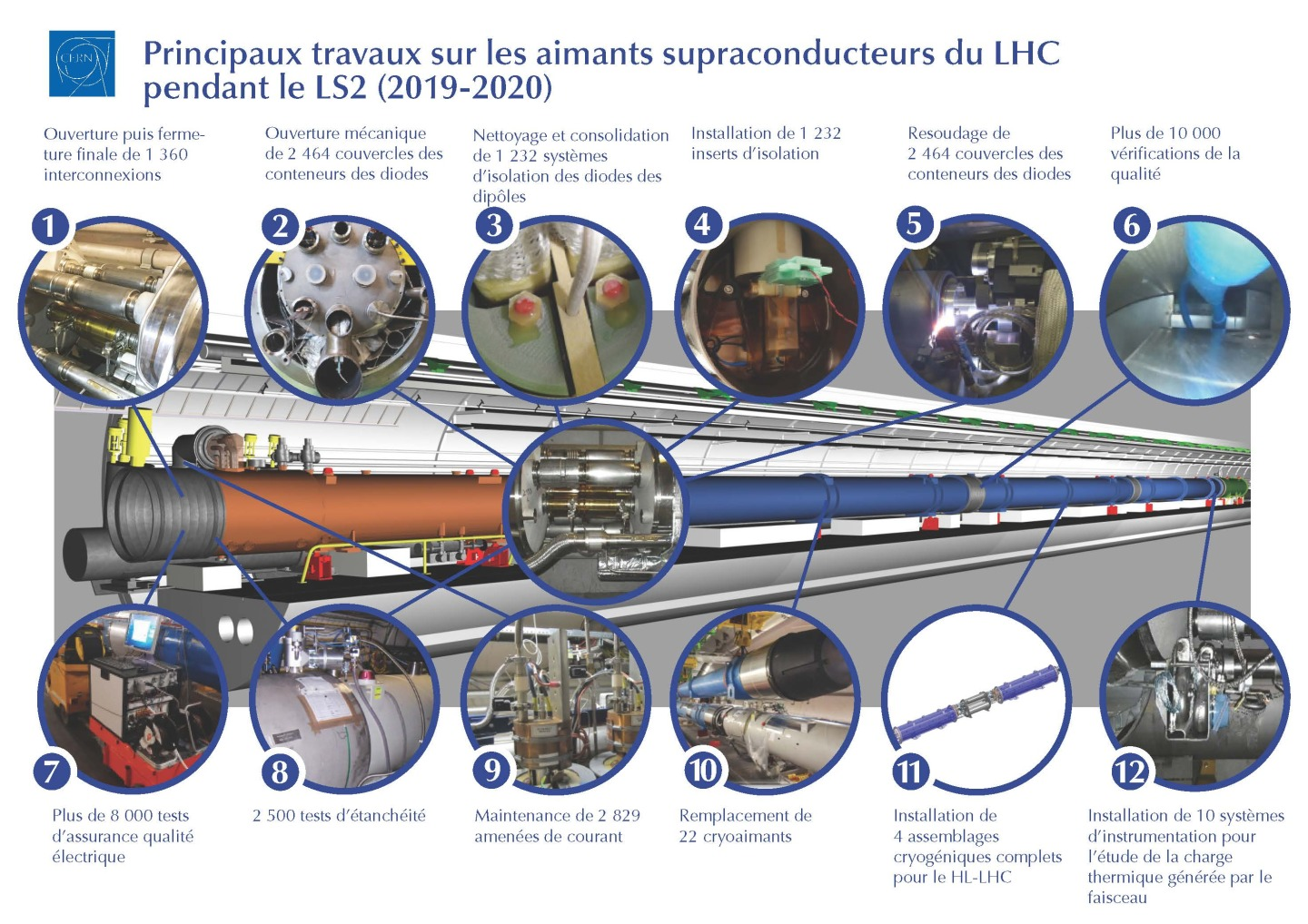Infographic of main work on the LHC superconducting magnets during LS2